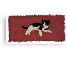 Zorro Kitten - Red Canvas Print