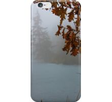 Deer Lake Fog iPhone Case/Skin