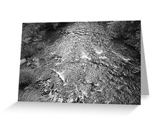 river rapids in black and white Greeting Card