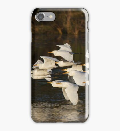 The Sunset Flock iPhone Case/Skin
