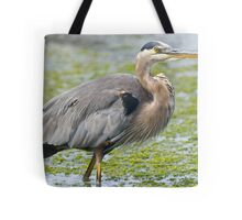Great Blue Tote Bag