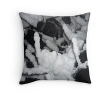 snow on branch - close up Throw Pillow