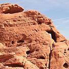 Desert Beauty in Nevada by Henry Plumley