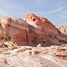 Mother nature is a painter in the Valley of Fire State Park by Henry Plumley
