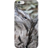 Tawny Frogmouth twins iPhone Case/Skin