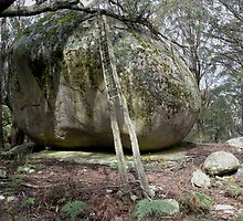 Rock - nr. Canberra, ACT, Australia by pocketdelight