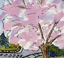 Cherry Tree in Bloom by Brenda Scott