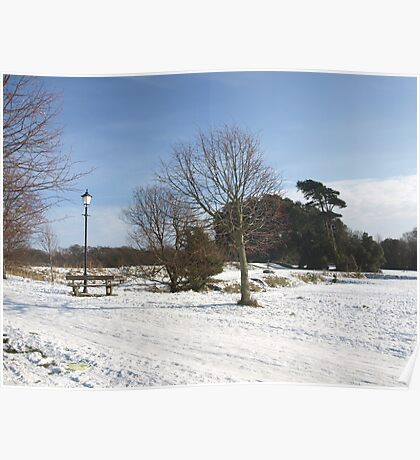 Snowy Country Park Poster