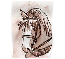 Draft Horse in Sepia Poster