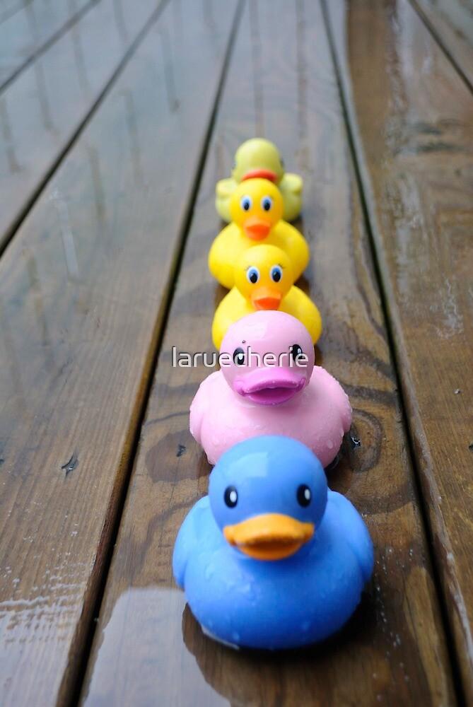 The ducks are coming  by laruecherie