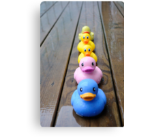 The ducks are coming  Canvas Print