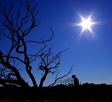 Outback Star by Penny Kittel