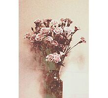 Abstract Vintage Carnation Photographic Print
