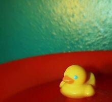 Get those ducks WET!! by Joshua Greiner