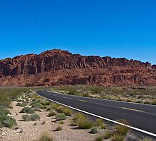 Valley of Fire parkway by Henry Plumley