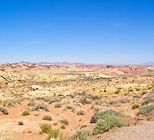 Valley floor in Valley of Fire State Park by Henry Plumley