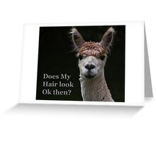 alpaca funny hair style Greeting Card