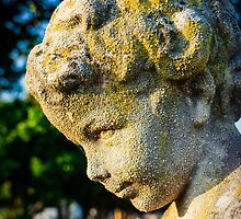 Memphis Elwood Cemetery - Boy Angel Vertical by JonWoodhams