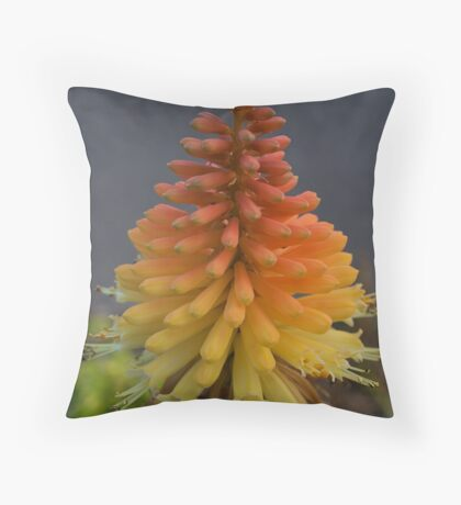 Torch Lily. 5263 Throw Pillow