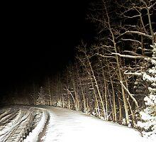 Snowy Road by Aaron Stramiello
