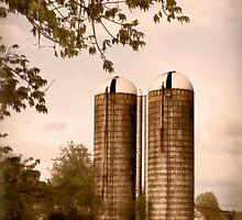 Morgan Dairy Grain Silos by Patricia Montgomery