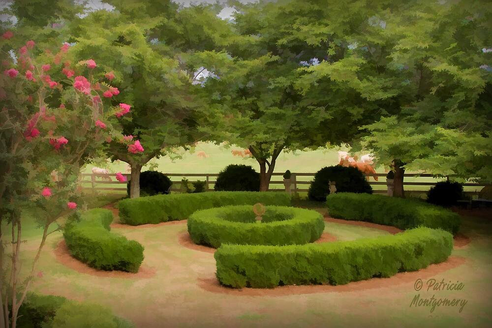 Colonial Heights Garden by Patricia Montgomery