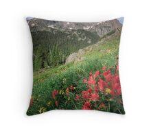 Summer Paint Brush - Indian Peaks Wilderness Throw Pillow