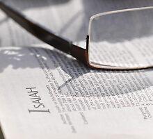 Bible Readings Isaiah by Rob Moffatt