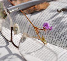 Bible Readings Isaiah (2) by Rob Moffatt