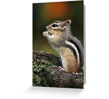 In His Own World / Chipmunk  Greeting Card