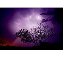 Lightning Tree Photographic Print