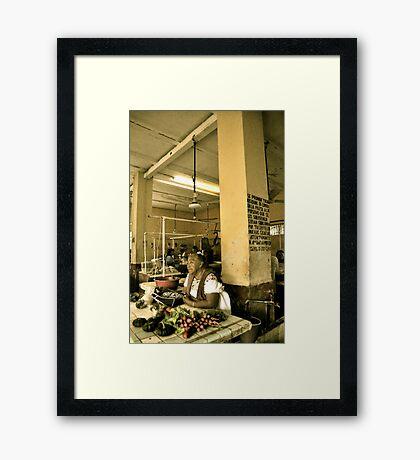 Market Life Framed Print