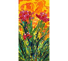 Spring Tulips, Triptych Panel 1 Photographic Print