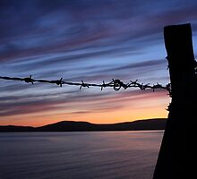 Barbed Wire Sunset by aidan  moran