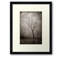 Treefingers - Dawn, Lake Moogerah Framed Print