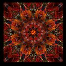 The Unfolding - Kaleido Square var 1 - PostCardArt by owlspook