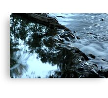 Life Force Water Canvas Print
