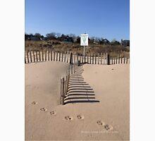 Paw Prints in the Sand - East Beach Watch Hil, RI Unisex T-Shirt
