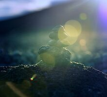 The Little Cairn by arc1