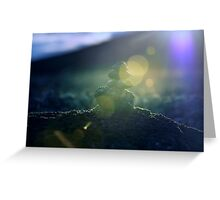 The Little Cairn Greeting Card