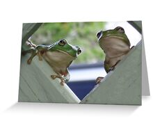 Hey, what are you looking at! Greeting Card