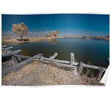 landscape of beautiful fishpond Poster