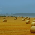 """"""" Drying Hay Bails """" by Richard Couchman"""