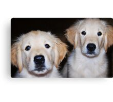 """""""Side-By-Side"""" Canvas Print"""