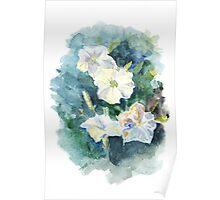 Watercolor Petunia Flowers Poster
