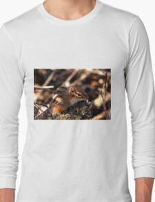 Baby Chipmunk Long Sleeve T-Shirt