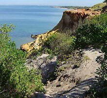 Red Bluff - Black Rock - Victoria - Australia by bayside2