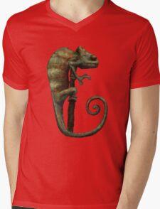Its a Chameleon Mens V-Neck T-Shirt