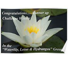 Runner Up Banner ~ Lotus ~ Poster