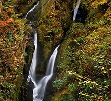 Stock Ghyll Force - The Lake District by Dave Lawrance